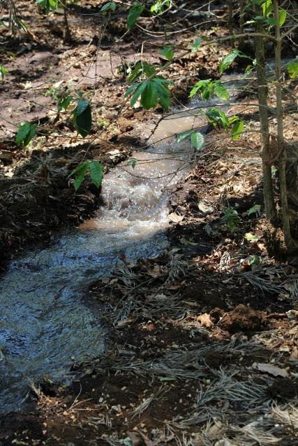 irrigationcanal