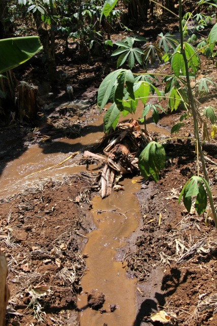 irrigationcanal2