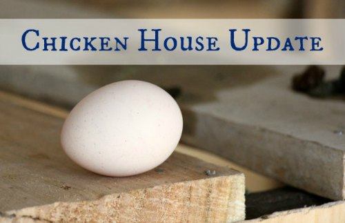 chickenhouseupdate