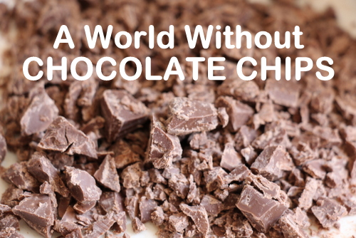 aworldwithoutchocchips