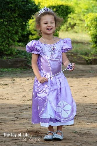 princess-sofia-dress
